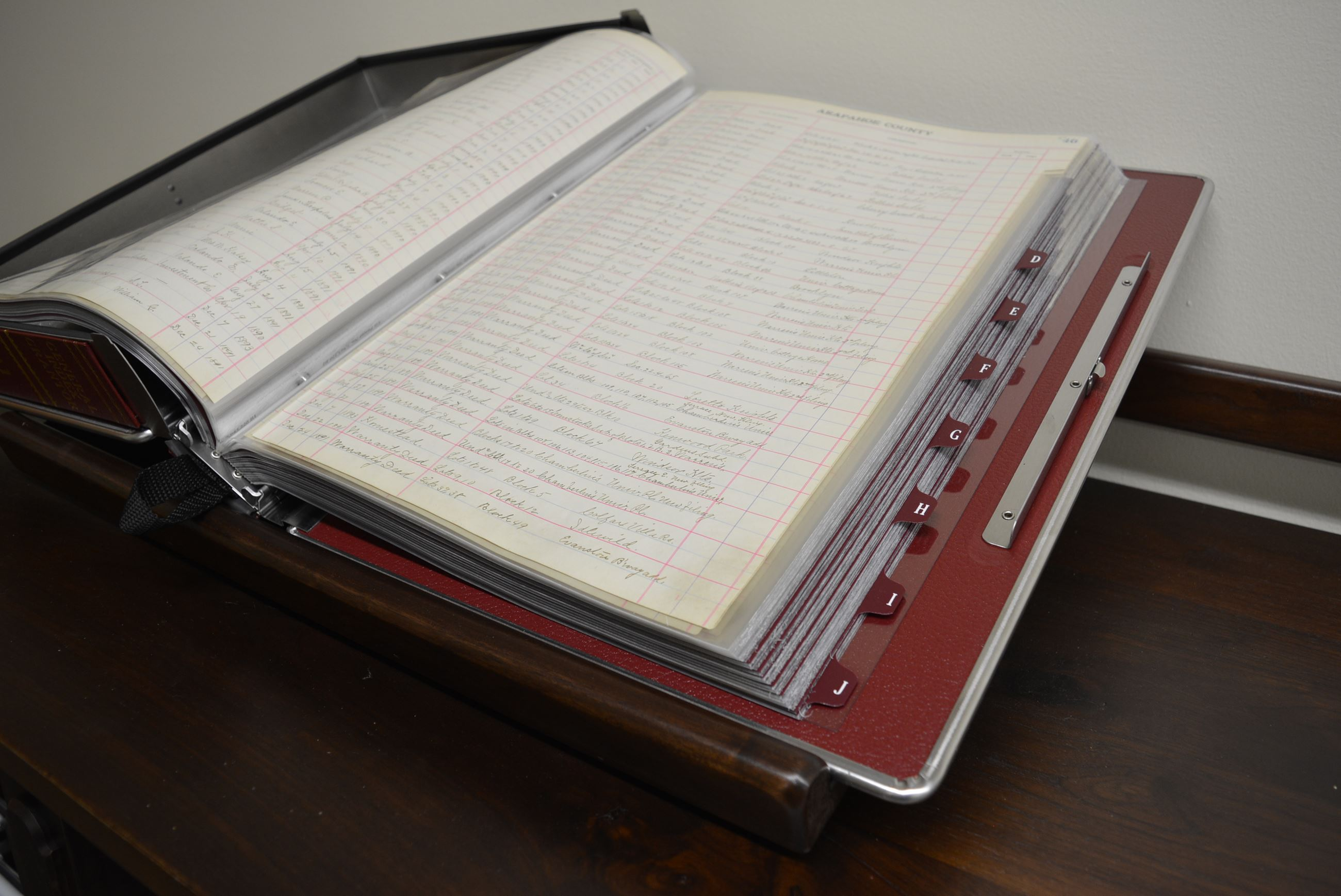 Inside of Preserved Record Book from 1800s