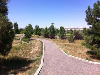 Cherry Creek Eco Park - Trail